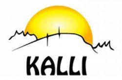 kallin-logo